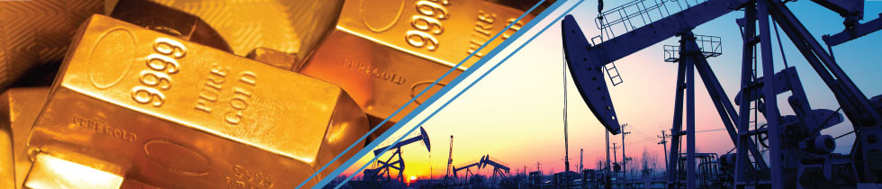 Trading platforms with lowest crude oil initial margin requirement